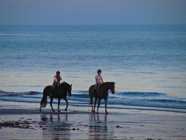 Horse_riding.jpg
